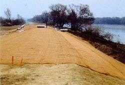 Oderdeich 1997