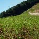 hier kommst du zu den Erosionsschutzprodukten