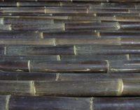 bambusrohr-wulung-schwarz
