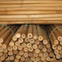 bambusrohr-tam-vong-geschaelt