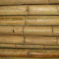 bambusrohr-tre-gai